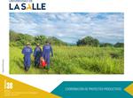 Boletín 38. Coordinación de proyectos productivos by Dirección de Planeación Estratégica